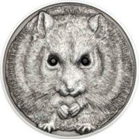 Аверс монеты «Хомяк Кэмпбелла»